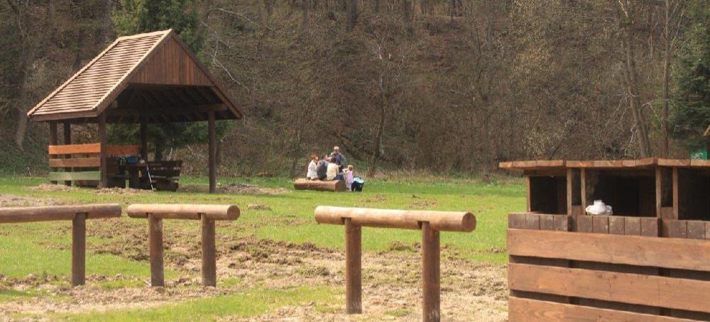 Nowe urządzenia turystyczne w lasach Beskidu Niskiego