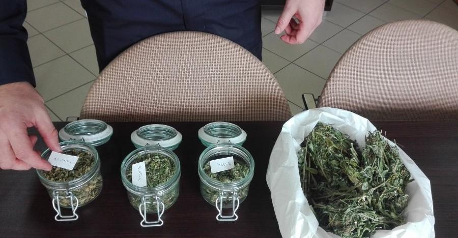 Zabezpieczono niemal 100 g marihuany. 39-latek usłyszał zarzuty