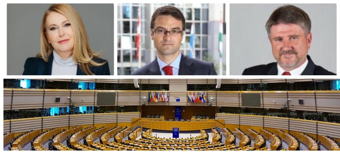 EUROWYBORY: Jak głosowali mieszkańcy Podkarpacia? (WYNIKI)