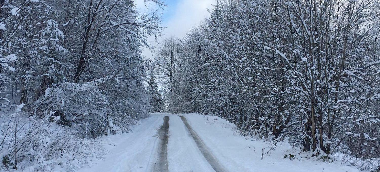 Bieszczady całe białe! 30 minut drogi z Sanoka (ZDJĘCIA)