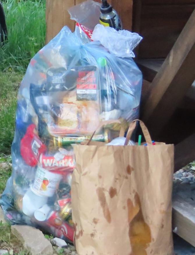 Śmieci pozostawione po dzikim biwaku w Bieszczadach (ZDJĘCIA)