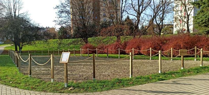 RZESZÓW. Powstały dwie łąki kwietne. Mają pomóc w walce ze smogiem (ZDJĘCIA)
