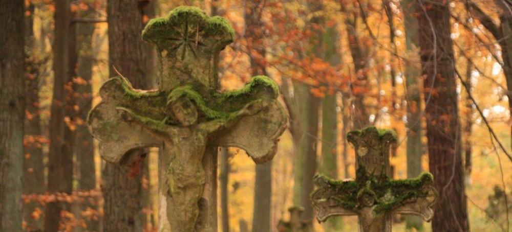 Porządkowali leśne cmentarze i mogiły (ZDJĘCIA)