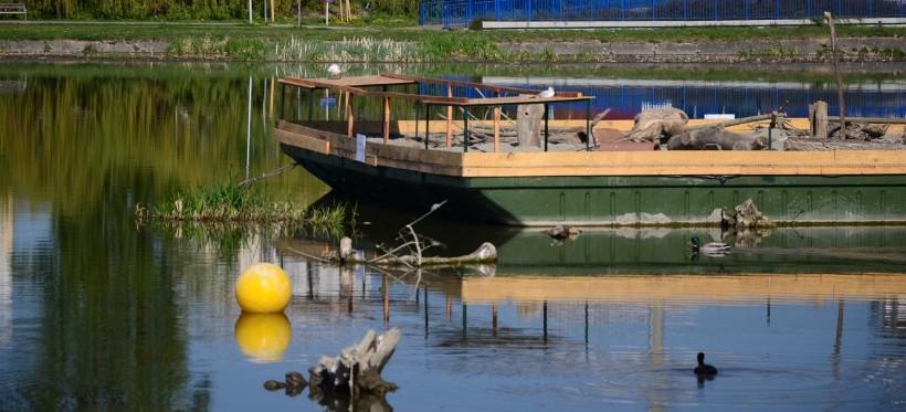 Na rzeszowskim zalewie powstała barka lęgowa dla ptaków! (FOTO)