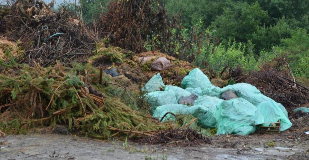 BRZOZÓW: Niewłaściwe gospodarowanie odpadami przez gminę. Kontrola dzikiego wysypiska (FOTO)