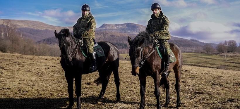 REGION. Nowe konie pomogą w ochronie granicy! (FOTO, WIDEO)