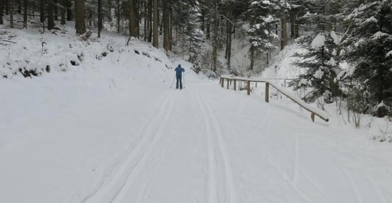 Trasy narciarskie czekają. W planach kilka imprez