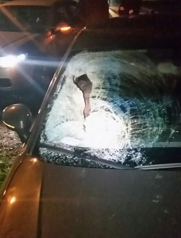 Tragiczny bilans na drodze. Troje pieszych zginęło w wypadkach