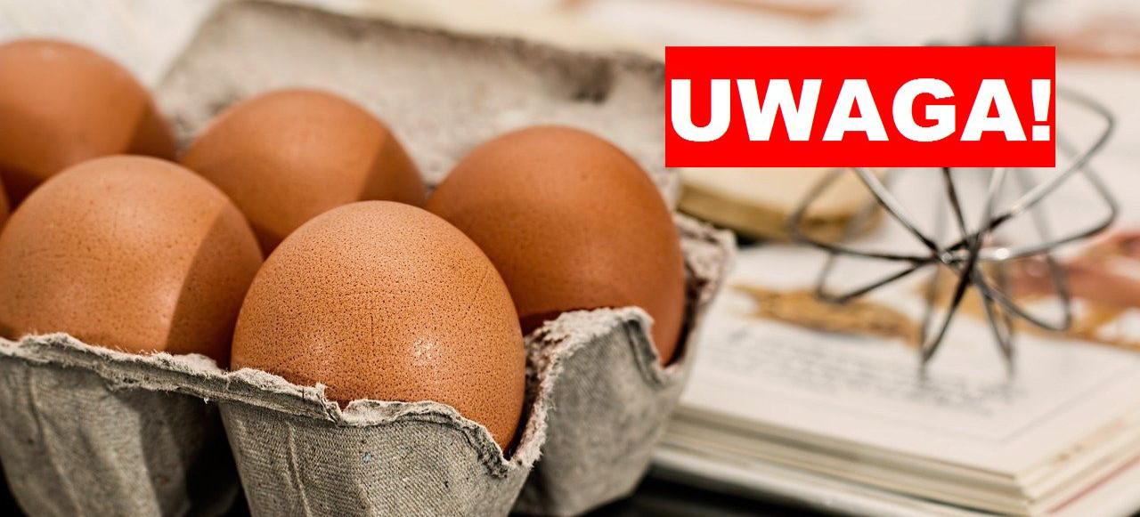 Salmonella! Jajka wycofywane z obrotu