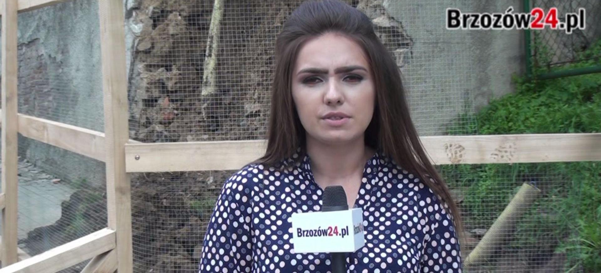 """SONDA: ,,To skandal, że droga była tak długo zamknięta"""". Brzozowski mur w rozsypce (VIDEO)"""