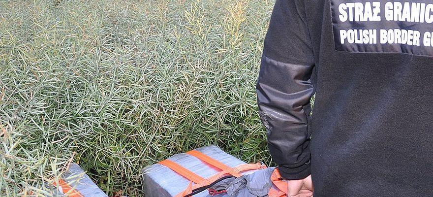Porzucona kontrabanda w polu… rzepaku (FOTO)