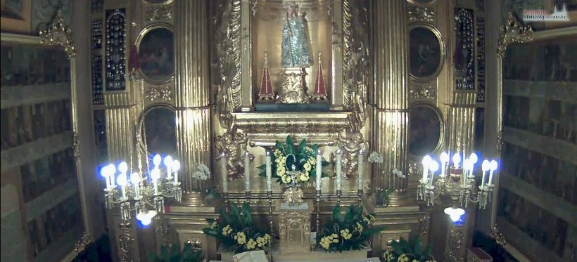 NA ŻYWO: Msze święte z Sanktuarium Matki Bożej Rzeszowskiej! (LIVE)