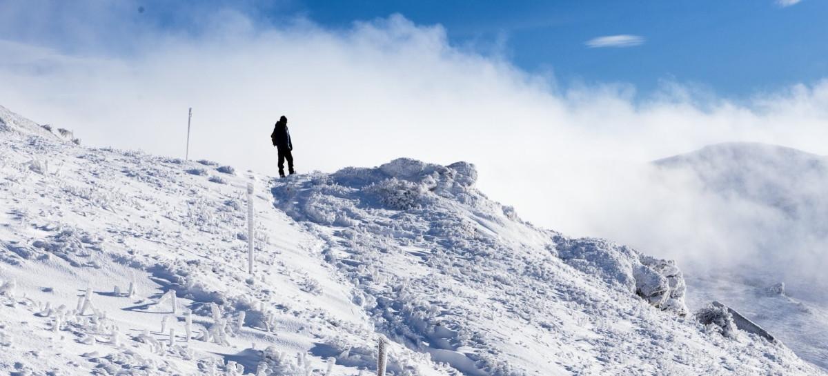 Zimowe krajobrazy w Bieszczadach. Wędrówka na Tarnicę (ZDJĘCIA)