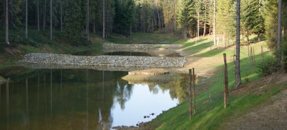 Program małej retencji. Więcej wody w lasach