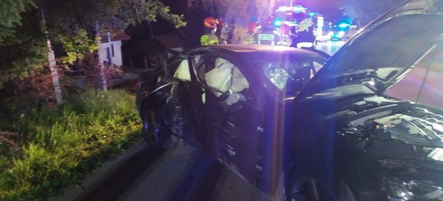 Audi uderzyło w drzewo. W samochodzie pięciu nastolatków (ZDJĘCIA)