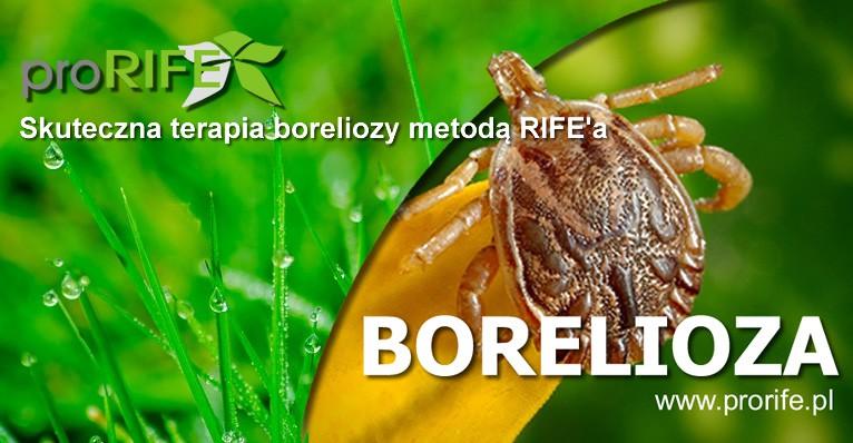 Plazmoterapia metodą Rif'e'a w Krośnie–postęp w leczeniu boreliozy