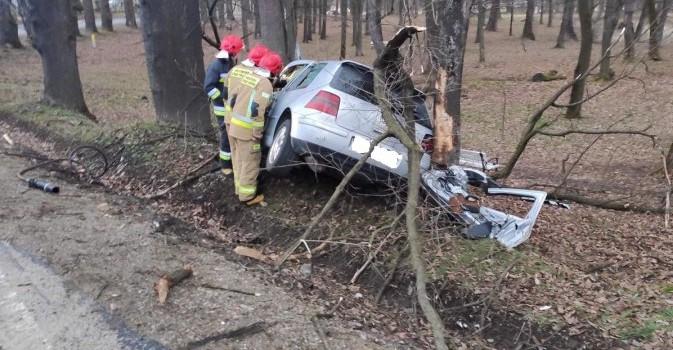 Pijany kierowca wjechał w drzewo (FOTO)