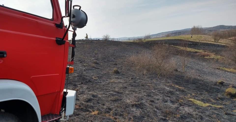Płonęły nieużytki rolne. Trzy jednostki w akcji (ZDJĘCIA)