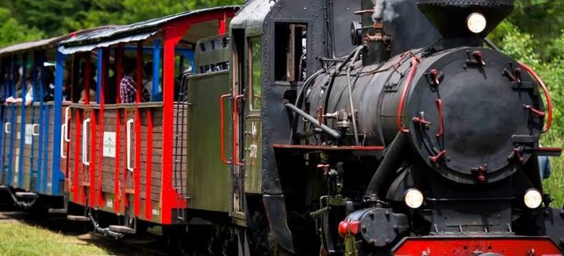REGION: Dodatkowe kursy wakacyjne Bieszczadzkiej Kolejki Leśnej!