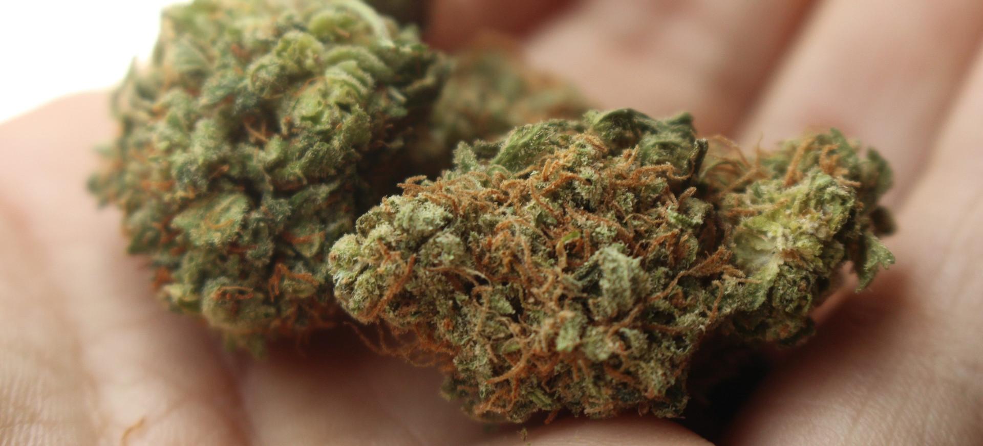 Marihuana i mefedron w saszetce 18-latka