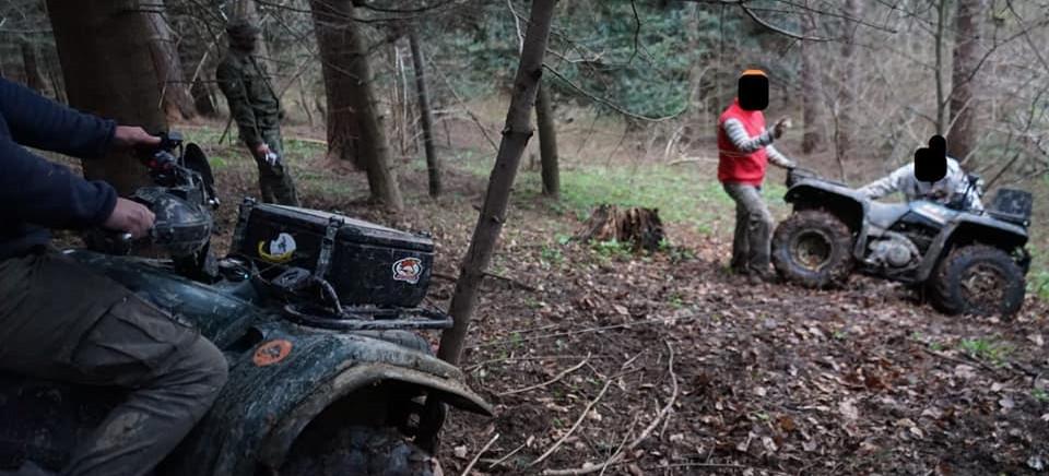 Więcej patroli w lasach. Potrącenie strażnika podczas próby zatrzymania