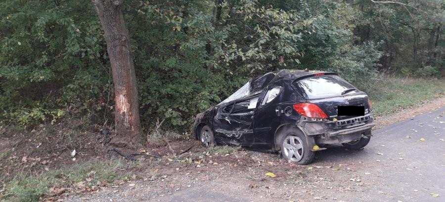 Zjechał z drogi i uderzył w drzewo. Kierujący 59-latek niestety zmarł