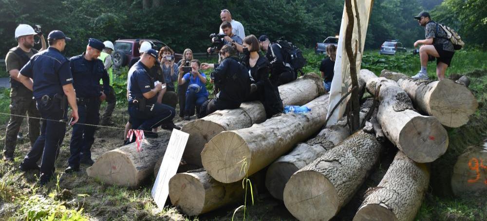 NADLEŚNICTWO BIRCZA: Wszyscy odczujemy skutku okupacji lasu. POSŁANKA NOWEJ LEWICY: Macki korporacji sięgają wszędzie