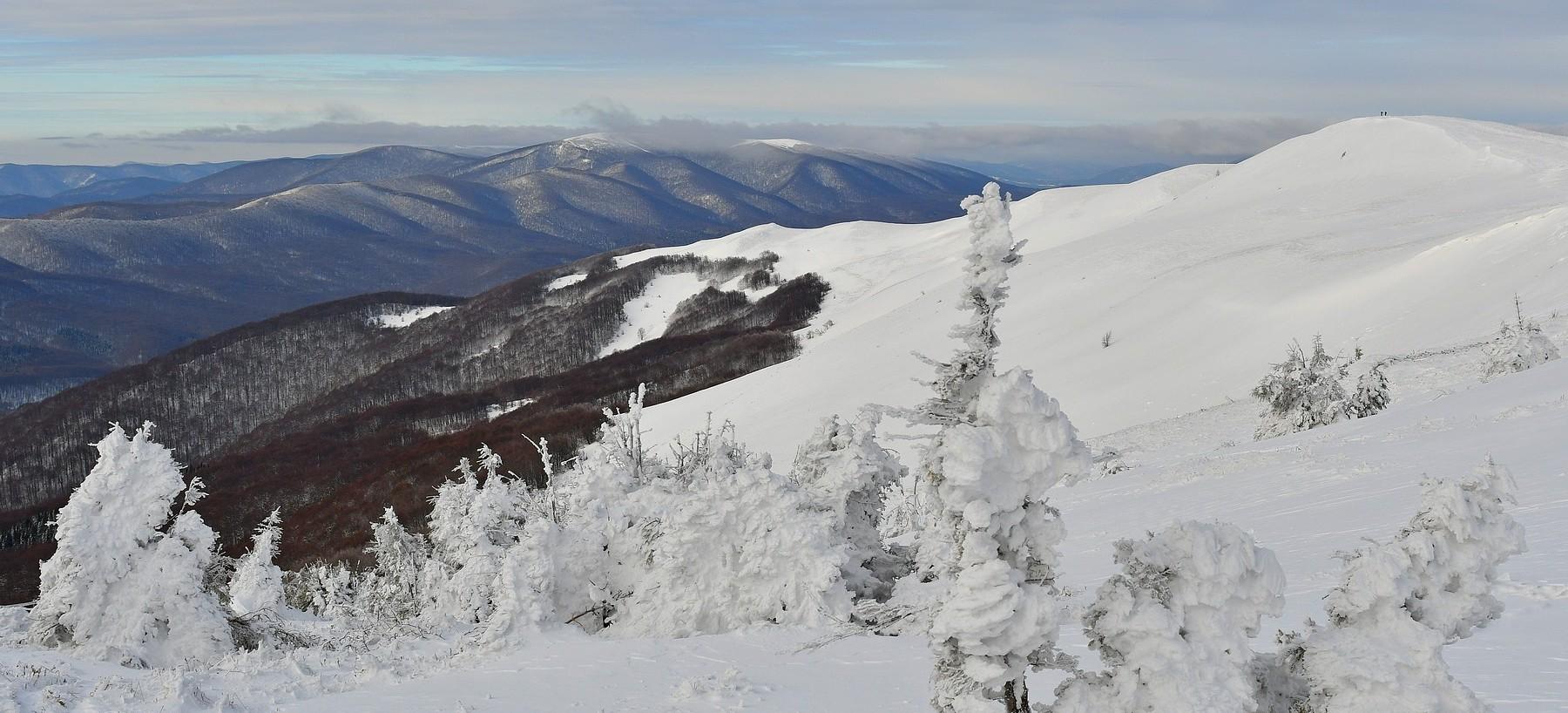 BIESZCZADY: Tarnica idealna na zimowe, górskie wędrówki (FOTO)