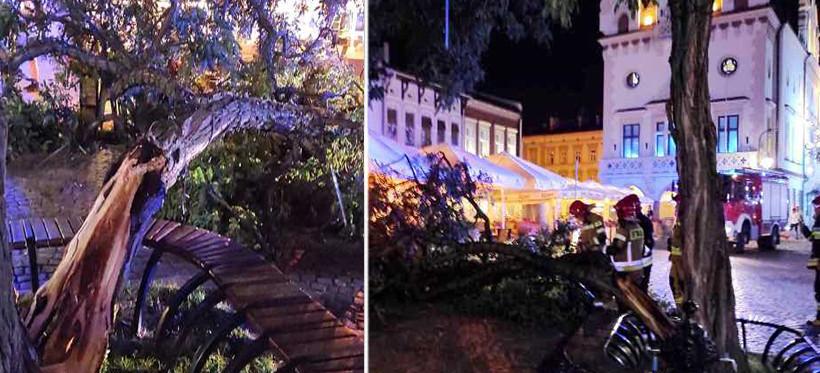 RZESZÓW. Wichura połamała drzewo na Rynku (ZDJĘCIA)