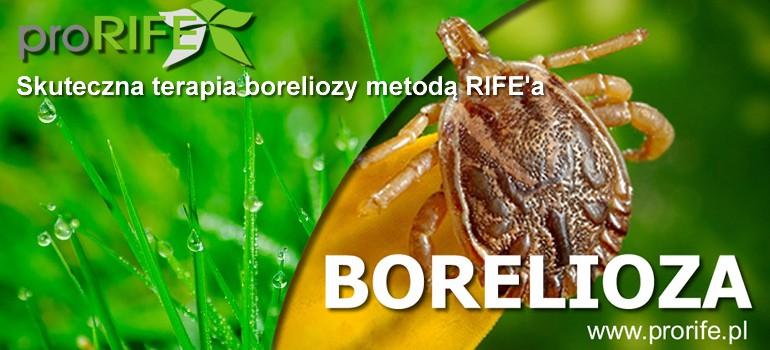 Borelioza – czy stanie się chorobą XXI wieku?