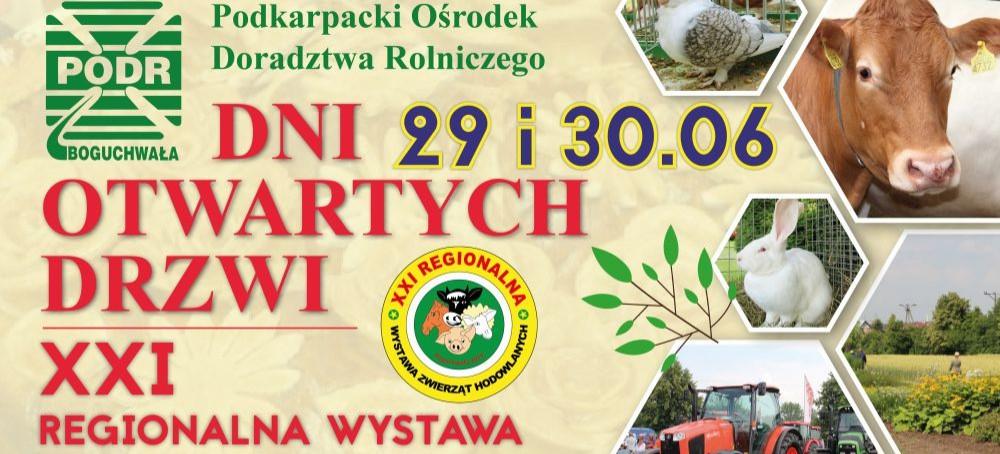 Święto rolnictwa w Boguchwale! Dni Otwartych Drzwi i XXI Wystawa Zwierząt Hodowlanych
