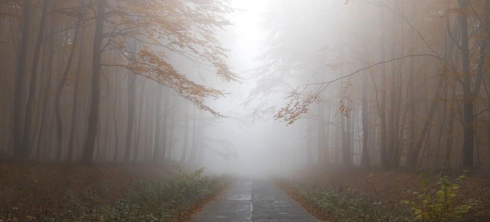 OSTRZEŻENIE: Gęsta mgła! Uważajcie!