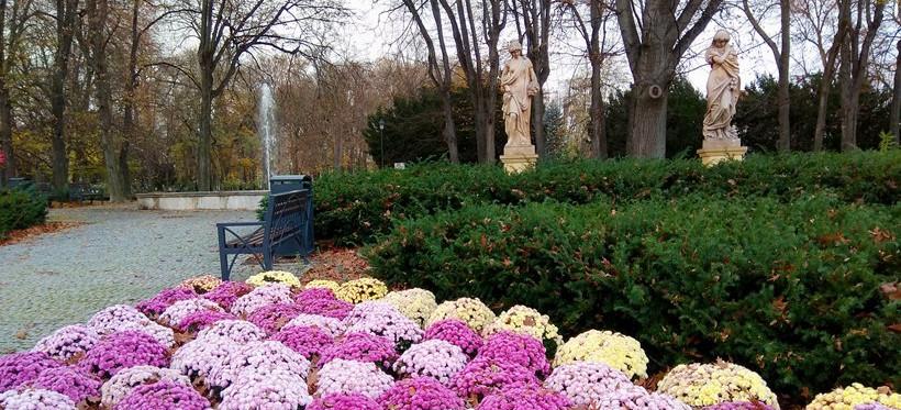 Ochrona w parku przy Dąbrowskiego. Były kradzieże roślin!