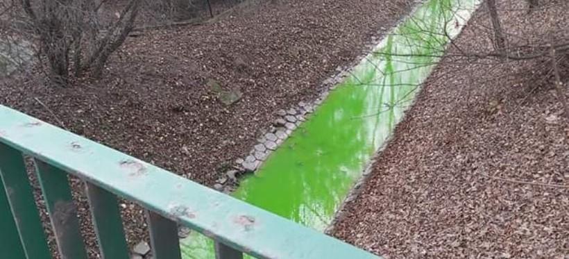 RZESZÓW. Zielona woda w potoku Młynówka. MPEC uspokaja (FOTO)