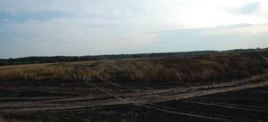 Potężny pożar. Spłonęło 40 hektarów pszenicy