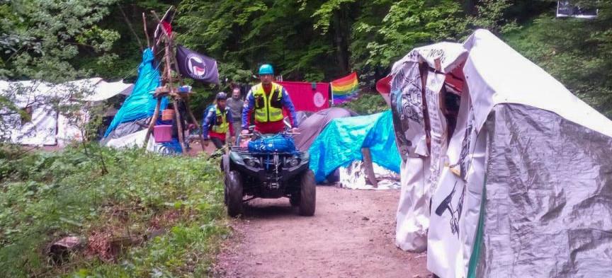 Bronią lasu blokując drogę. To jeszcze protest, czy już anarchia?