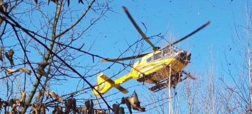 ŻARNOWA. Drzewo przygniotło mężczyznę. Interwencja śmigłowca LPR (FOTO)