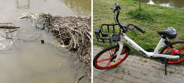 RZESZÓW: Rower miejski Blinkee znaleziony w Wisłoku! (FOTO)