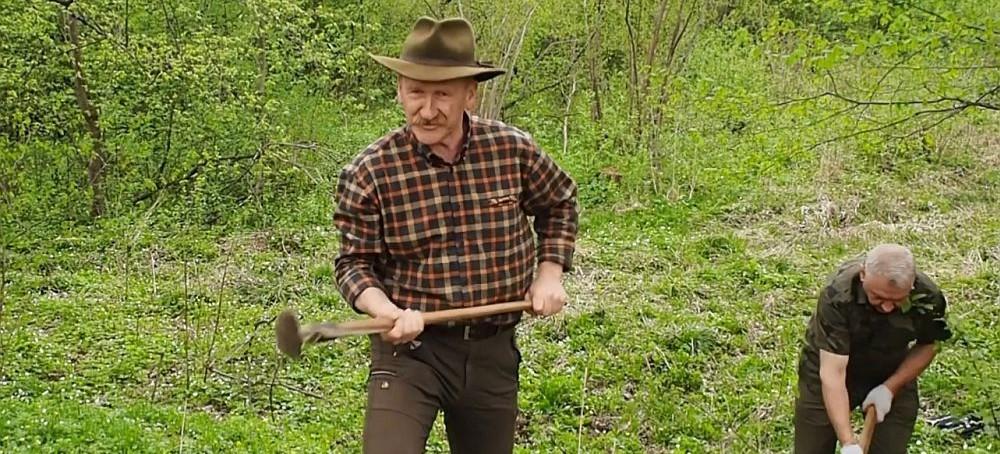 """""""Czas sadzić las"""". Jak to zrobić siekiero-motyką? Zobacz film! (VIDEO)"""