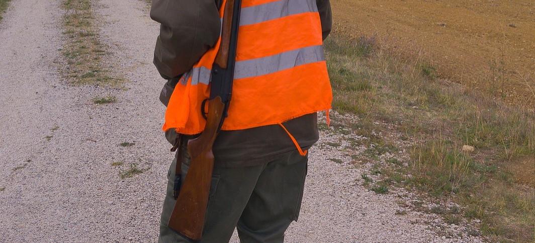 Odstrzelono dwa wilki pod Brzozowem. Zostaną poddane badaniom