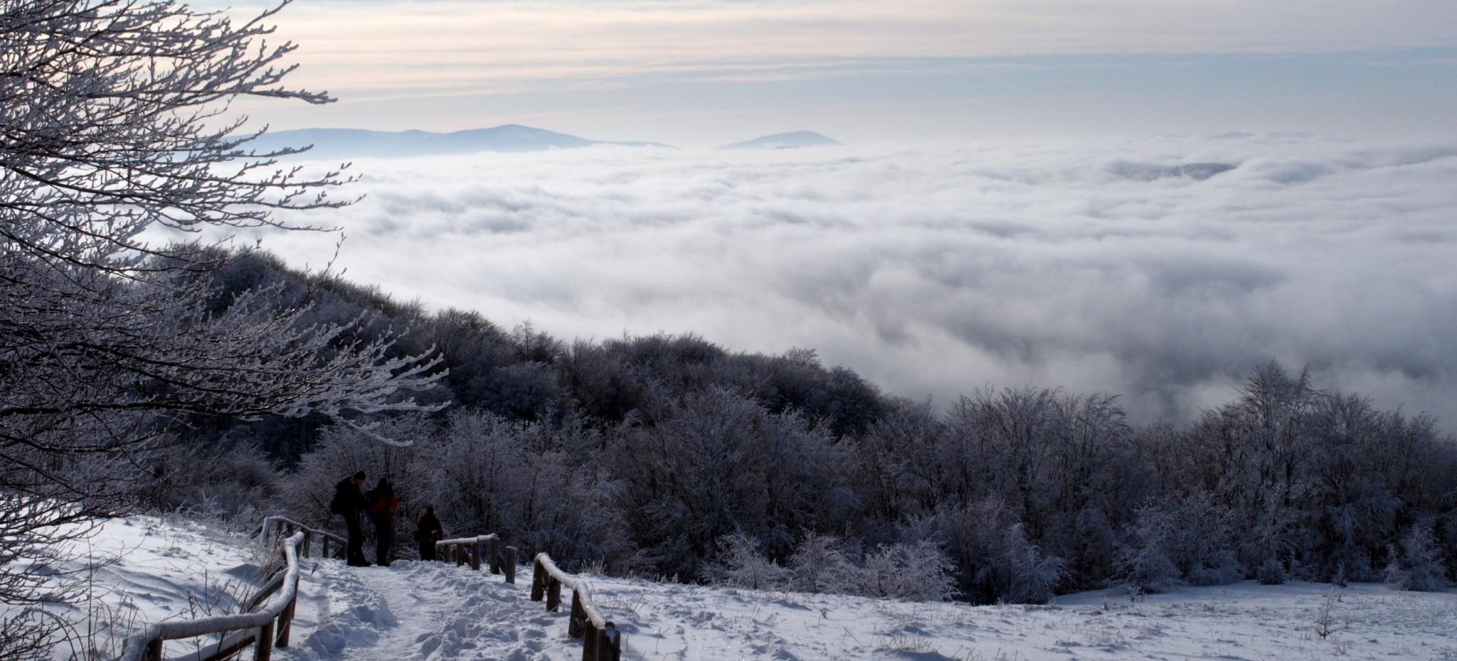 BIESZCZADY: Otulona mgłą Tarnica. Zjawiskowo! (ZDJĘCIA)