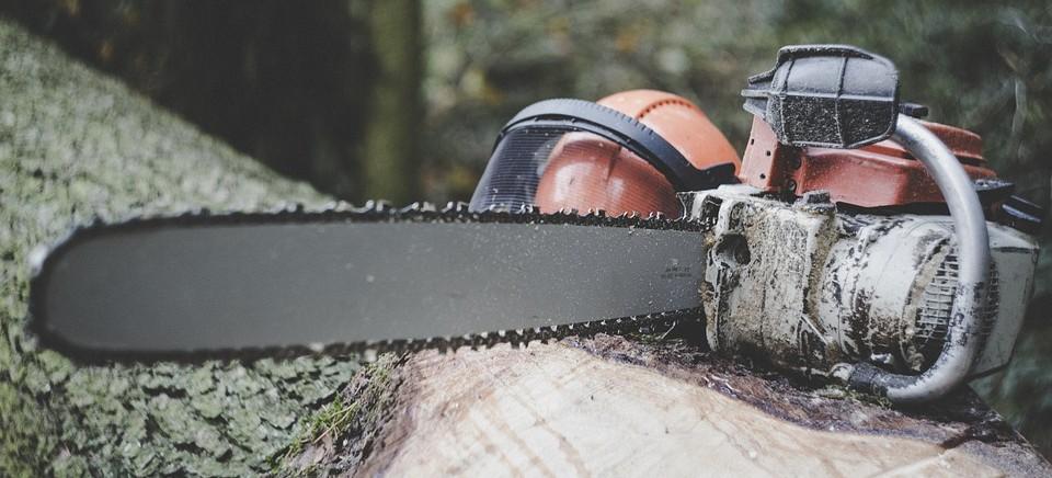 Tragedia w Grabownicy. 55-latek zginął przygnieciony przez drzewo