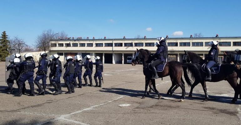 Egzamin policyjnych wierzchowców