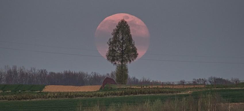 Niesamowite ujęcia wschodu księżyca pod Rzeszowem! (FOTO)