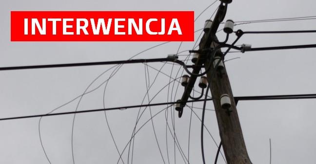 """INTERWENCJA: Mieszkańcy Bieszczadów skarżą się na działanie Internetu. Radny """"boksuje"""" się z operatorem"""
