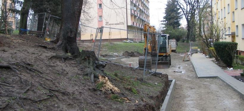 RZESZÓW. Uszkodzone drzewa przy odnawianiu podwórka. Interwencja Marka Bajdaka (FOTO)