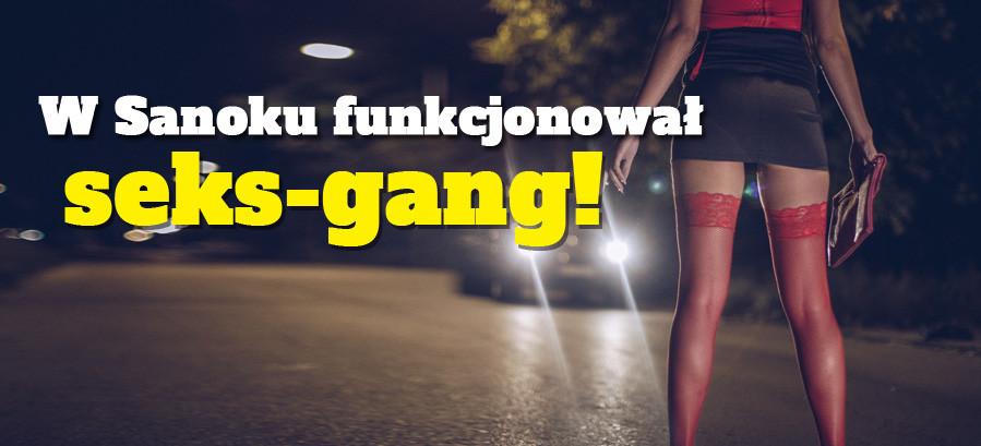 W Sanoku funkcjonował seks-gang! Lokal z prostytutkami