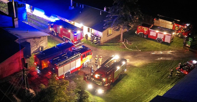 Pożar na fermie drobiu. Spłonęło 7000 indyków (FOTO)