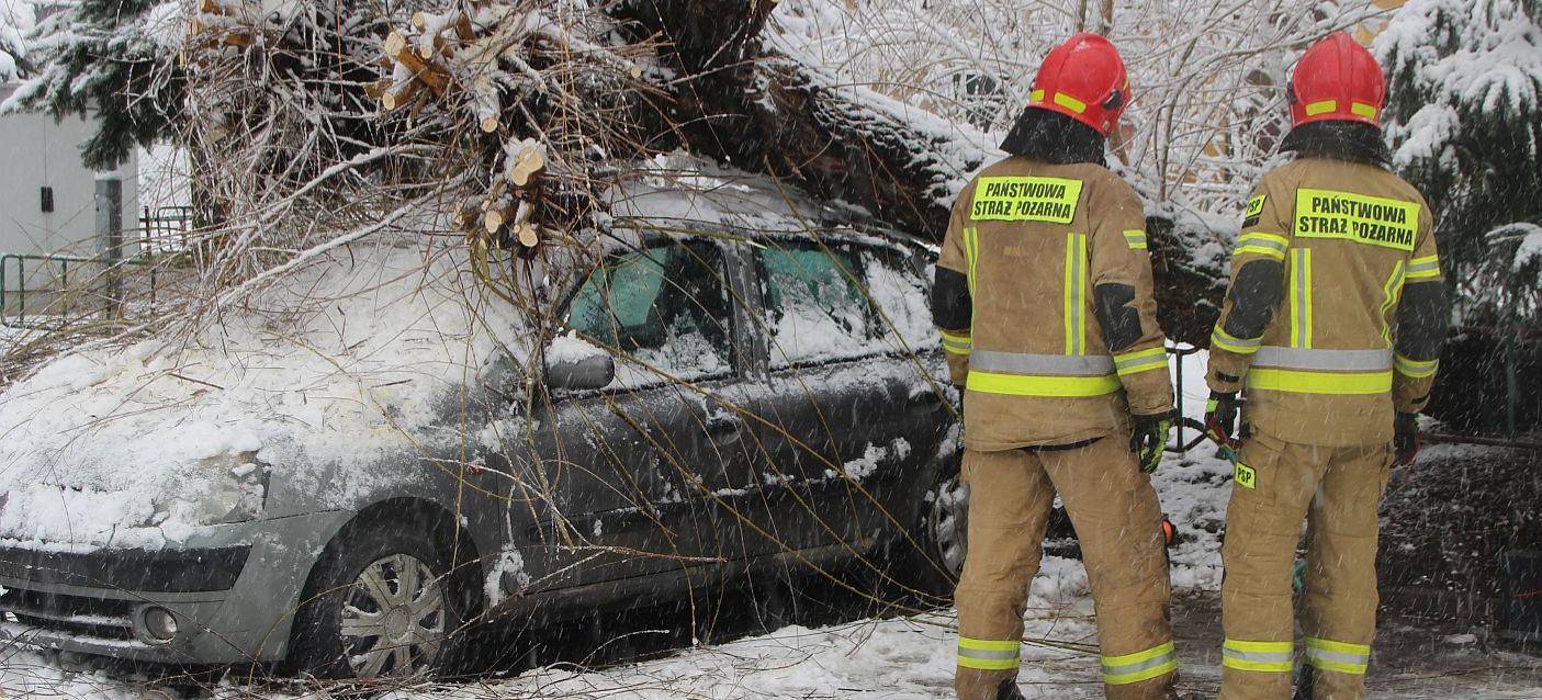 Akcja strażaków. Samochód przygnieciony przez drzewo (VIDEO, ZDJĘCIA)