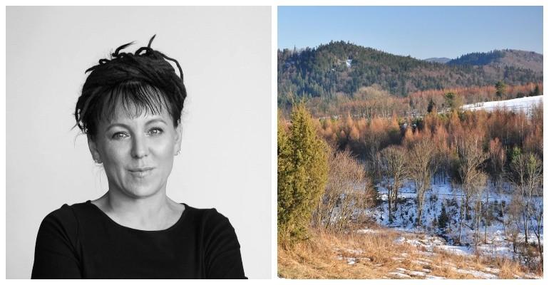 Olga Tokarczuk apeluje do Lasów Państwowych o zatrzymanie wycinki w Bieszczadach